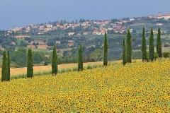 k-Landschaft Toskana