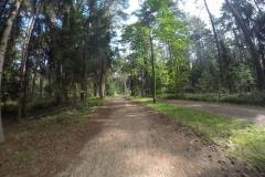 Am Brombachsee Radweg2